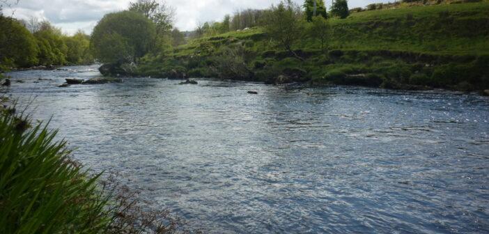 River Finn